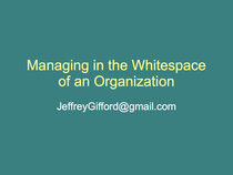 Managing in the whitespace of your organization cv