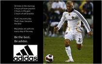 Beckham cv