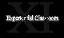 Ex cv
