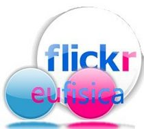 Ef flickr cv