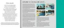 Css brochure page 2 cv