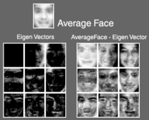 Face recognition1 cv