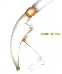 Cover shoe cv