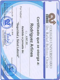 Certificado seguridad y salud cv