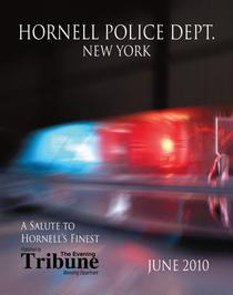 Policemans tab 2010 layout 1 1 cv