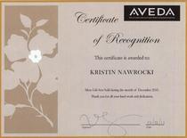 Certificate 2 cv