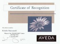 Certificate 3 cv