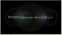 Annual report cv