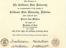 Diploma ba pamela morris cv