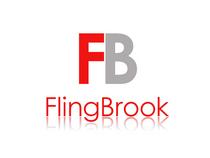 Flingbrook3 cv