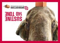 Brikston elefant 4x3 cv