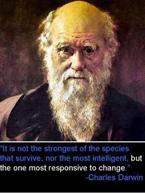 Darwin cv
