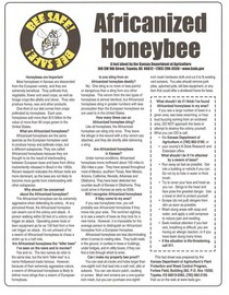 Africanized honeybee fact sheet cv