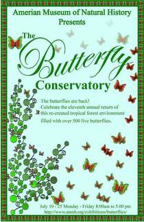 Butterfly poster.ai cv