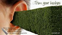 Trim your hedges cv