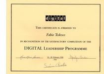 Digital leadership programme cv