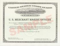 Usmm license cv