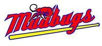 Mudbugsjersey logo cv