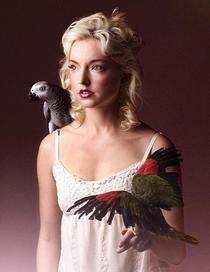Bird1 8 5x11 1  449x581danielle bird 2 cv