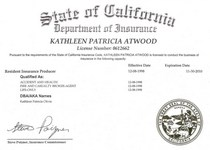 Insurance license cv
