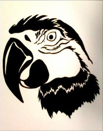 Parrot cv