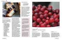 Nir heila.magazine redo5 cv