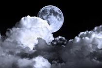 Moon cv