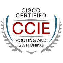 Ccie routeswitch large cv