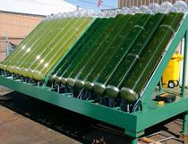 Algae bioreactor cv