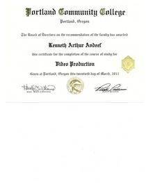 Pcc video certificate cv