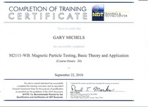 Mt training cv