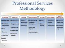 Professional services methodology cv