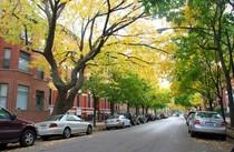 Lincoln park neighborhood 590x385 cv