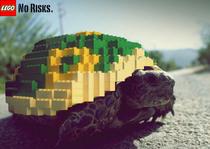 Turtlefinal cv