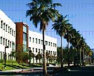 Cal state northridge cv