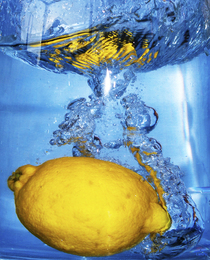 lemon  cv