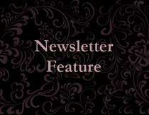 Newsletter icon cv