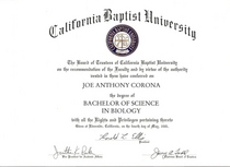Bachelor degree 1 cv
