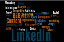 Linkedin specialties july 2011 wordle.net cv