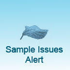 Logo  issues alert cv