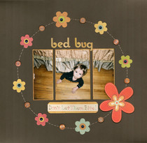 Bedbug cv