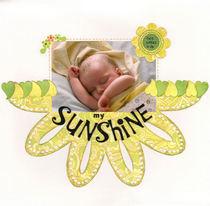 Sunshine cv