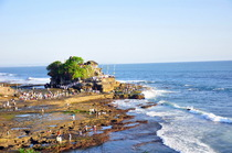 Bali 16 1 cv