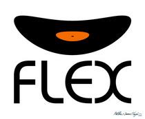 Flex cv