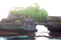 Bali 25 cv