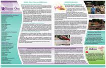 Sigma one summer 2011 newsletter2 cv
