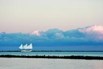 Sailing solo cv