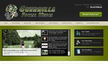 Website 03 cv