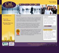 Website 01 cv
