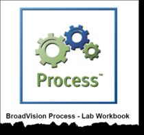 Process 0c cv